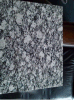 海の波の花の花こう岩の平板のタイルのスプレーの白い平板の花こう岩
