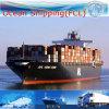 Логистика экспедитор, международного судоходства (FCL 20''40'')