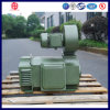 Direct Drive DC Electric Motor 100 Kw for Extruder