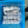 0.30mm Twine Monofilament Fishing Net