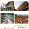 Milieuvriendelijke Openlucht Houten Plastic Samengestelde Muur Decoratieve WPC Panle
