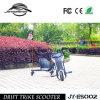 Juguetes para niños Electric Nuevo diseño Freestyle Bike for Sale