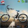 페달 전기 여자 바닷가 함 자전거