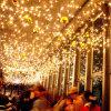 O sincelo de borracha do diodo emissor de luz ilumina a luz de anúncio clara do feriado do Natal