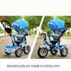 China-Hersteller-Großverkauf-Baby-Spaziergänger (ly-a-94)
