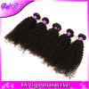 O cabelo Curly Kinky malaio malaio 4PCS do Virgin do cabelo Curly, Weave humano Curly do vison malaio da beleza empacota o preto 8-30