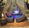 鳥のネストの日光のラウンジ浜の円のドームの庭の家具の藤Sunbed T585