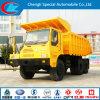 De klassieke Vrachtwagen van de Stortplaats van de Mijnbouw van Shacman van het Merk 6X4 Op zwaar werk berekende