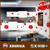 Puerta del armario de cocina de la flor (ZH-C873)