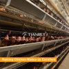 [لوور بريس] زراعيّ تجهيز 128 عصافير دجاجة قفص [كوب]