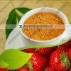 Freies Beispielgefriertrocknetes sofortiges Würze-Erdbeere-Puder