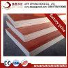 Les matériaux de construction Film face contre-plaqué pour la construction