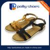 Sandali antisdrucciolevoli delicatamente comodi della trasparenza di stile delle donne della ragazza nuovi