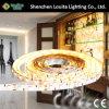 Alto Luminious 12V impermeabilizza una striscia dei 2835 LED