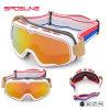 Les meilleures glaces de Sun de Motorcross de lunettes de vent d'épreuve de lunettes de soleil en gros de moto