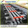 Соединение расширения моста стальной плиты высокой эффективности для Пакистана