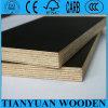 madera contrachapada de 15*1220*2440m m Construcrion, madera contrachapada del encofrado de Concerete