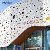 알루미늄 정면 장식적인 스크린 벽 클래딩 위원회