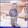 Relógio de pulso ocasional ocasional das senhoras de quartzo da cinta de couro do ODM (Wy-062D)