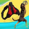 Toebehoren van het Lood van de Leiband van de Honden van het Huisdier van het Netwerk van de Band van het Vest van de Uitrusting van de Hond van huisdieren de Weerspiegelende In te ademen