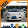 China maakte de Nieuwe ModelLevering voor doorverkoop van het Elektrische voertuig Sw10