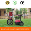 350W, trotinette elétrico da mobilidade de 3 rodas 36V, trotinette Handicapped (MS-01)