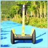 La mejor motocicleta eléctrica de la batería de plomo del funcionamiento mini