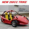 250cc go-kart het Go-kart Kart Single Cylinder/Pedal van Buggy/Go voor Adult (mc-415)