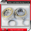 Rolamento de rolo cilíndrico do rolamento de rolo NUP419M da gaiola de bronze