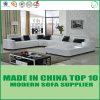 Insieme sezionale del sofà del cuoio bianco della mobilia del salone