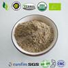 Polvere organica dell'ortica