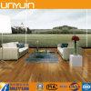 Suelo del PVC de las casas, azulejo de suelo del vinilo, de moda y ambiental