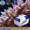 수족관 산호 약 (HZY002)