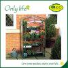 Onlylifeの工場BSCI再使用可能で熱い販売の温室植物カバー