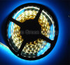 SMD impermeabile LED Strip Light 5050/3528/2835/5630SMD