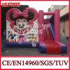 2015 Highquality popular Inflatable Bouncer Castle com Slide (J-BC-022)