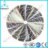 El concreto reforzado del diamante que cortaba la circular vio la lámina