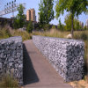 Gabions de pedra soldado para o jardim Dection