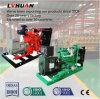 Générateur électrique de l'alimentation de gaz naturel fabriqué en Chine