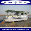 E-750小屋のボートのBestyearの電気ボート