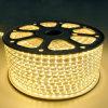110V / 220V 3528 LED Strip com 7-8lm para decoração acolhedora para casa