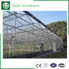 Muti-Überspannung Wasserkultursystems-Glasgewächshaus für die Landwirtschaft
