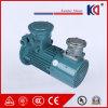 Motor elétrico trifásico com sistema de movimentação variável da freqüência