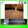 Afstandsbediening Portable Starlite LED Dance Floor voor Wedding Party