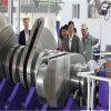 カスタマイズされた延性がある鋳鉄の空気圧縮機のクランク軸、ディーゼル機関のクランク軸