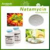 De Natamycine van het Additief voor levensmiddelen voor Brood
