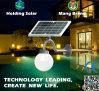 Lâmpada LED do painel solar de monocristal para jardim com à prova de água