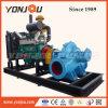 Cummins-Dieselmotorpumpe-Set