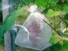 PP 겨울 동안 비 길쌈된 직물 과일 토마토 바나나 낱단 덮개 원예식물 보호 덮개