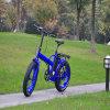 20  fetter Gummireifen 250W, der elektrisches Fahrrad faltet
